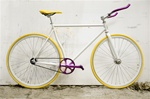 Fixed Gear Custom
